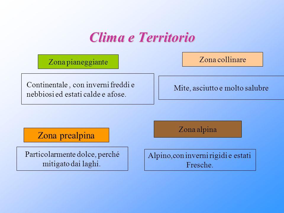 Clima e Territorio Zona pianeggiante Continentale, con inverni freddi e nebbiosi ed estati calde e afose. Zona collinare Mite, asciutto e molto salubr