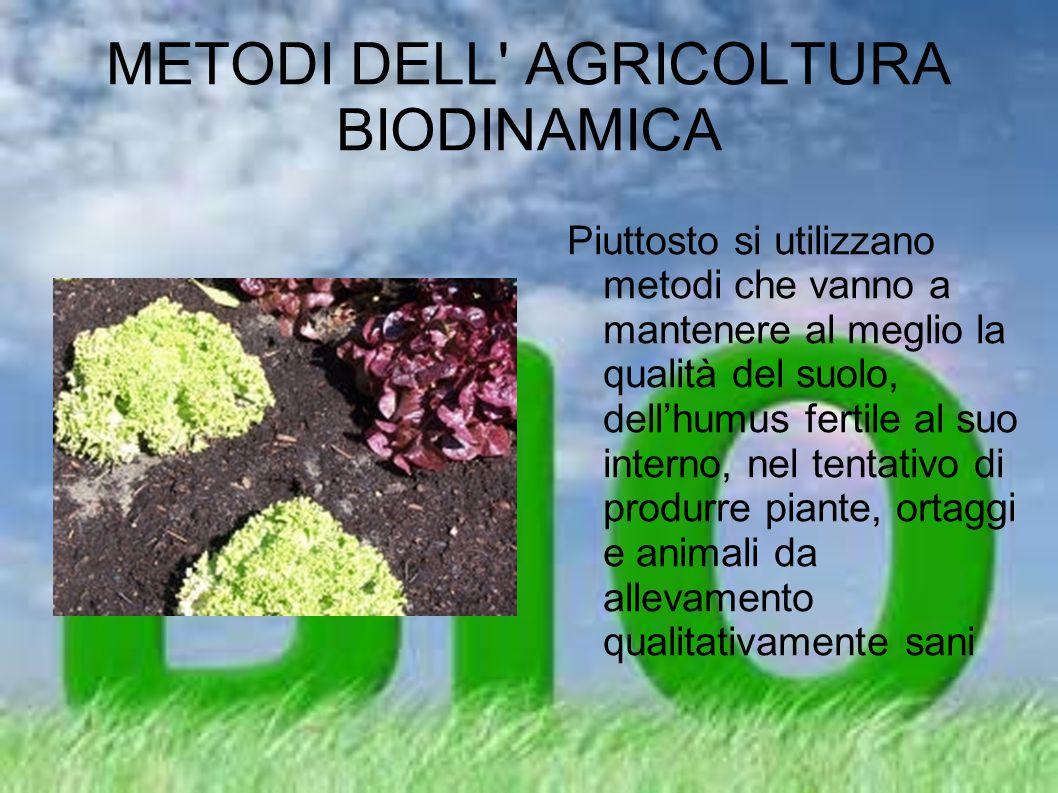 METODI DELL' AGRICOLTURA BIODINAMICA Piuttosto si utilizzano metodi che vanno a mantenere al meglio la qualità del suolo, dell'humus fertile al suo in