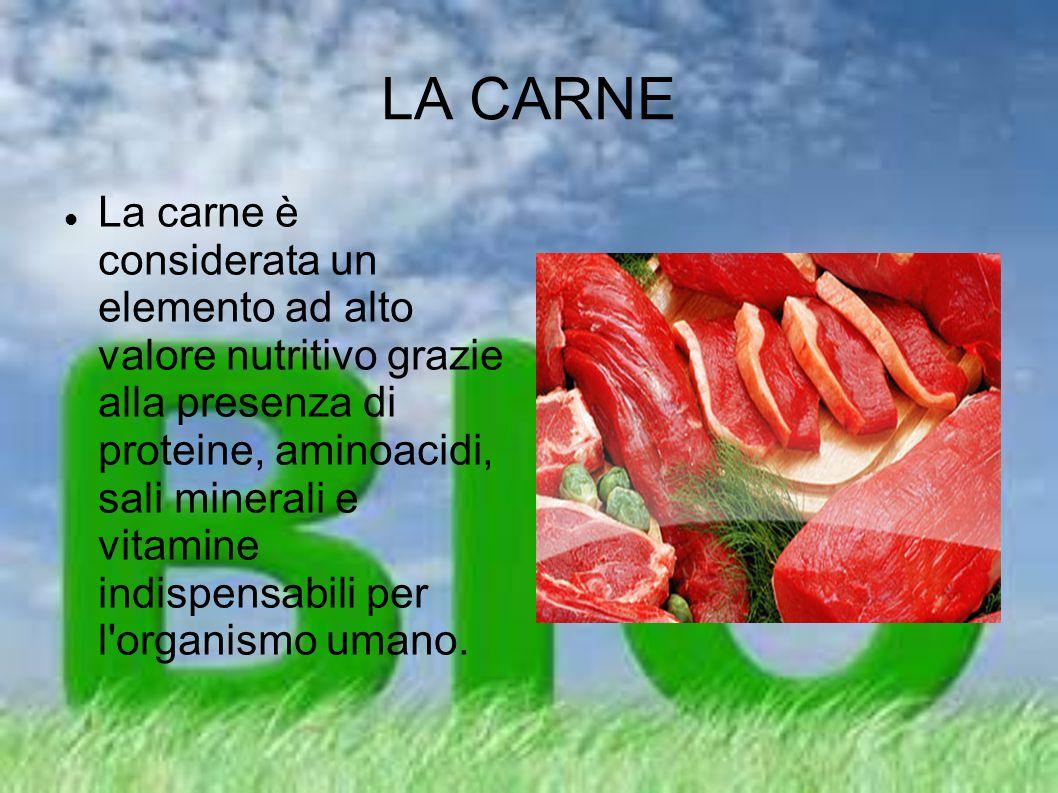 LA CARNE La carne è considerata un elemento ad alto valore nutritivo grazie alla presenza di proteine, aminoacidi, sali minerali e vitamine indispensa