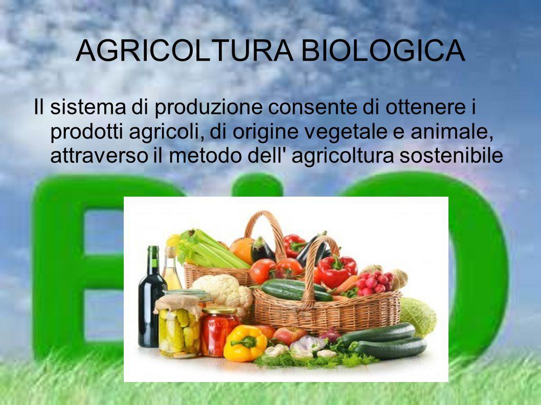 AGRICOLTURA BIOLOGICA Il sistema di produzione consente di ottenere i prodotti agricoli, di origine vegetale e animale, attraverso il metodo dell' agr
