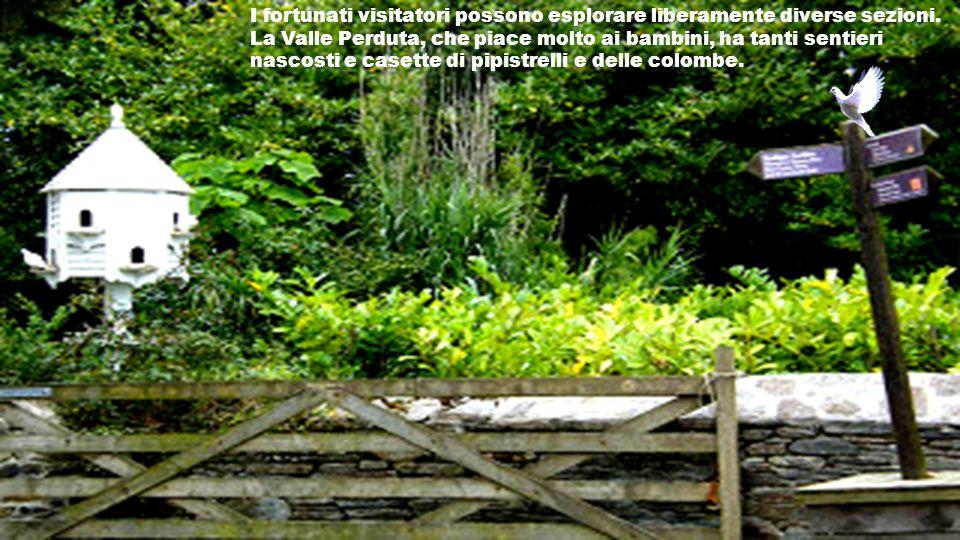 Gli Orti Vittoriani, che sono stati pluripremiati, riproducono fedelmente gli orti dell'epoca vittoriana con oltre 200 varietà di frutta, erbe ed orta