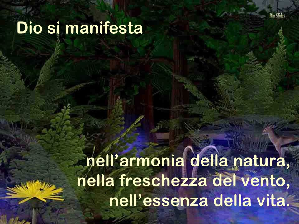 nell'armonia della natura, nella freschezza del vento, nell'essenza della vita. Dio si manifesta
