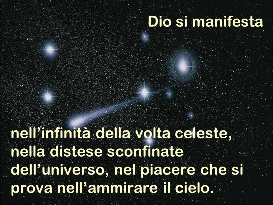 nell'infinità della volta celeste, nella distese sconfinate dell'universo, nel piacere che si prova nell'ammirare il cielo.
