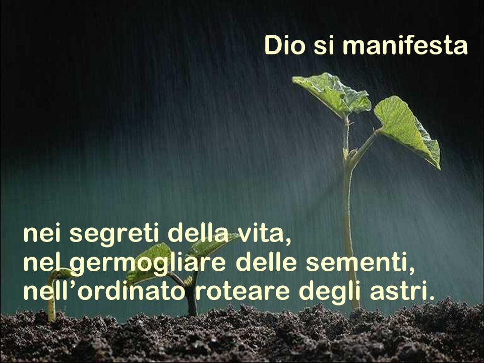 nei segreti della vita, nel germogliare delle sementi, nell'ordinato roteare degli astri.