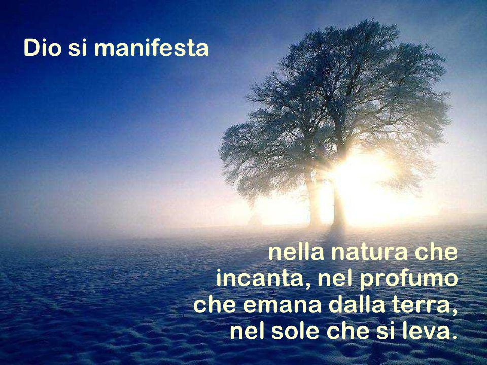 nella natura che incanta, nel profumo che emana dalla terra, nel sole che si leva.