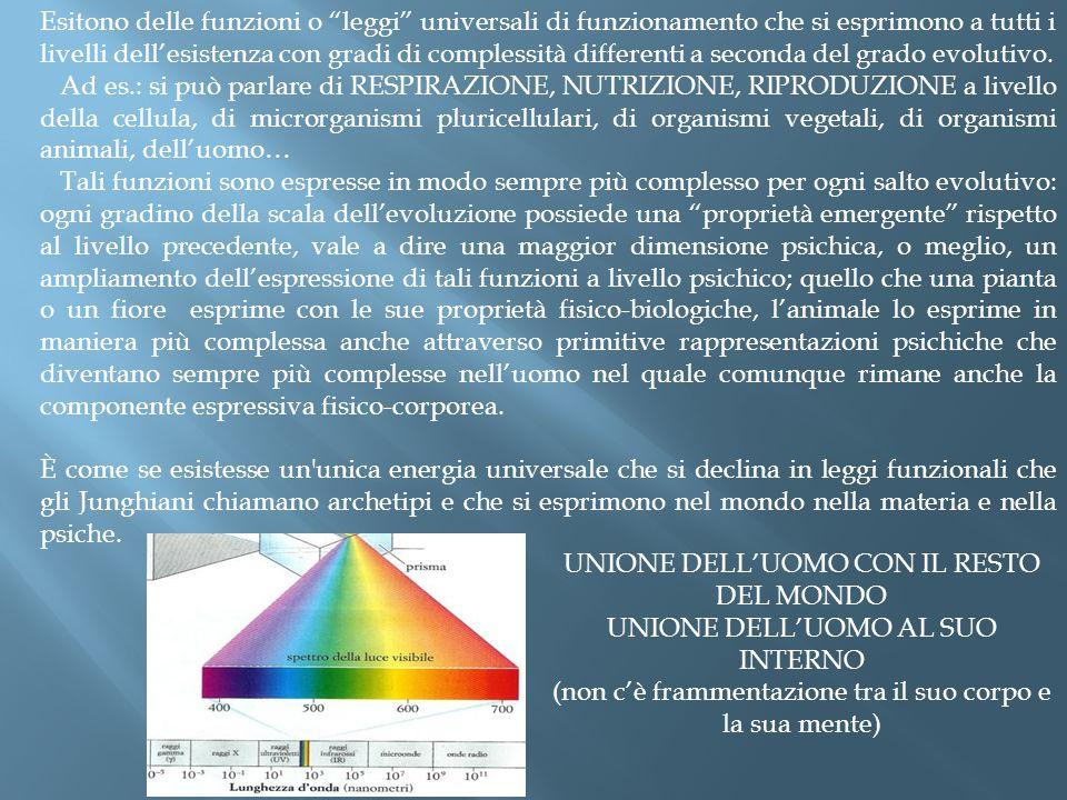 """Esitono delle funzioni o """"leggi"""" universali di funzionamento che si esprimono a tutti i livelli dell'esistenza con gradi di complessità differenti a s"""