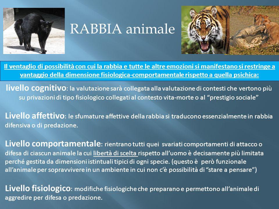 RABBIA animale livello cognitivo : la valutazione sarà collegata alla valutazione di contesti che vertono più su privazioni di tipo fisiologico colleg