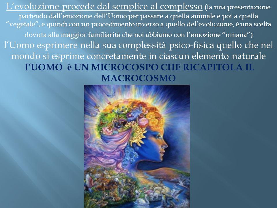 """L'evoluzione procede dal semplice al complesso (la mia presentazione partendo dall'emozione dell'Uomo per passare a quella animale e poi a quella """"veg"""