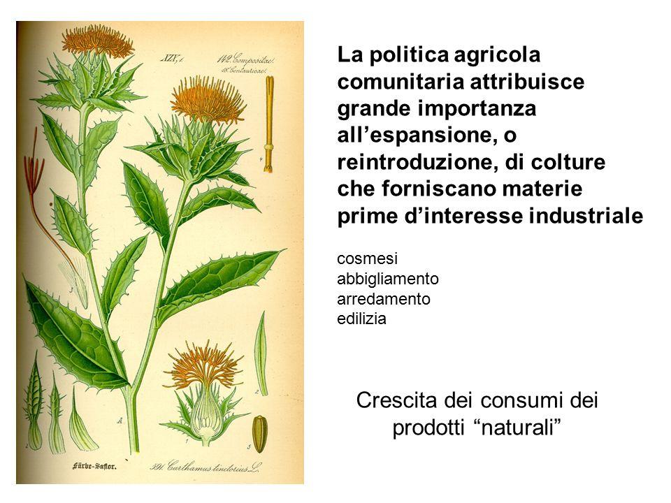 La politica agricola comunitaria attribuisce grande importanza all'espansione, o reintroduzione, di colture che forniscano materie prime d'interesse industriale cosmesi abbigliamento arredamento edilizia Crescita dei consumi dei prodotti naturali