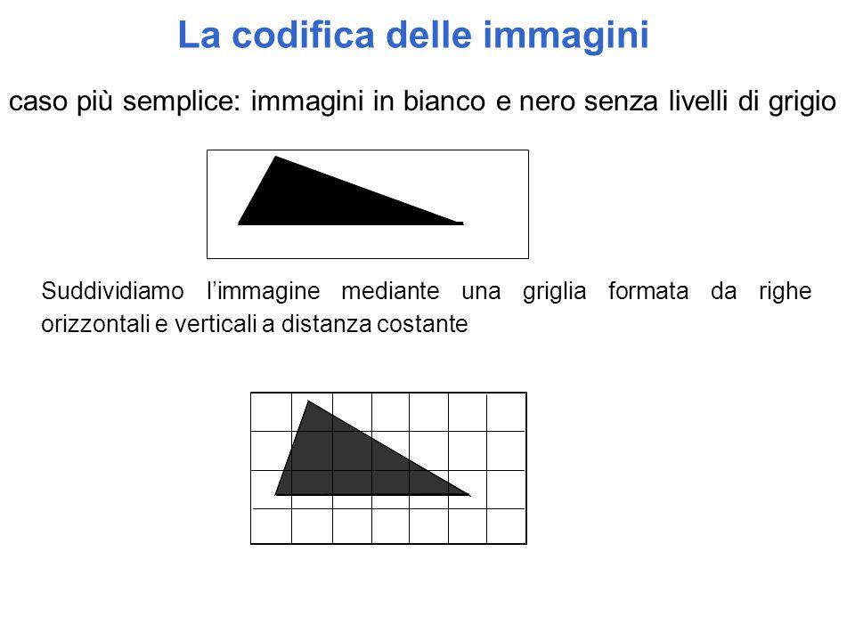 La codifica delle immagini Suddividiamo l'immagine mediante una griglia formata da righe orizzontali e verticali a distanza costante caso più semplice