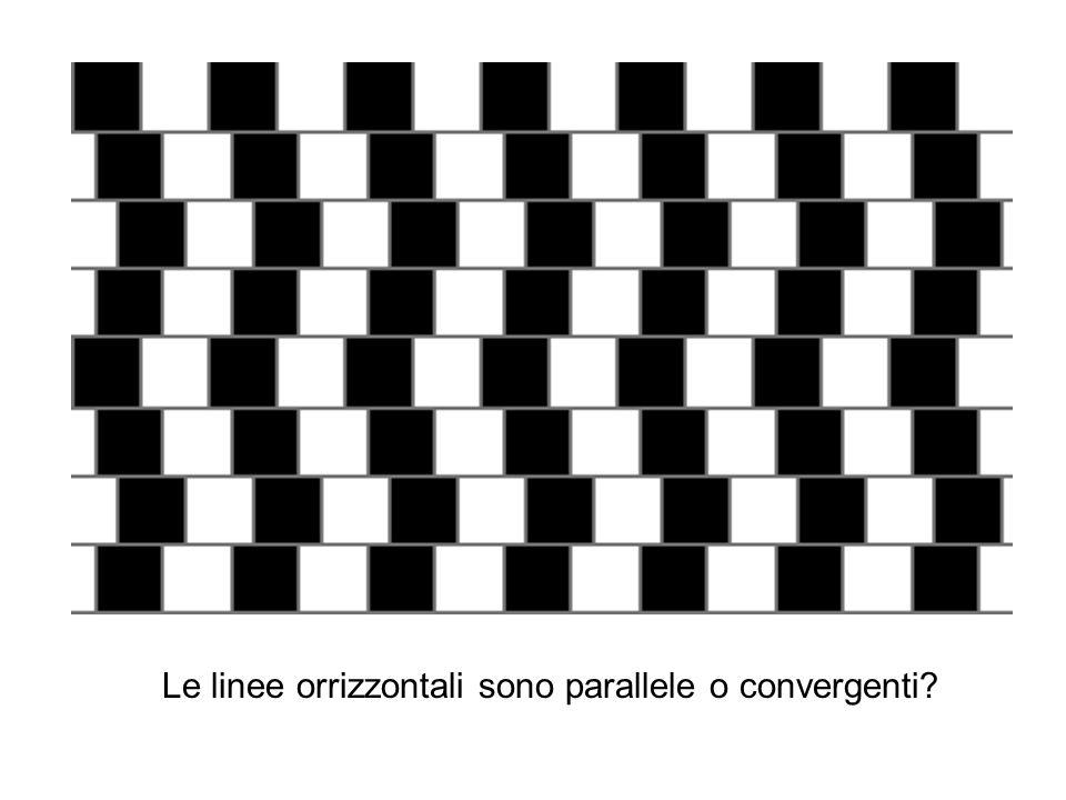 Le linee orrizzontali sono parallele o convergenti?