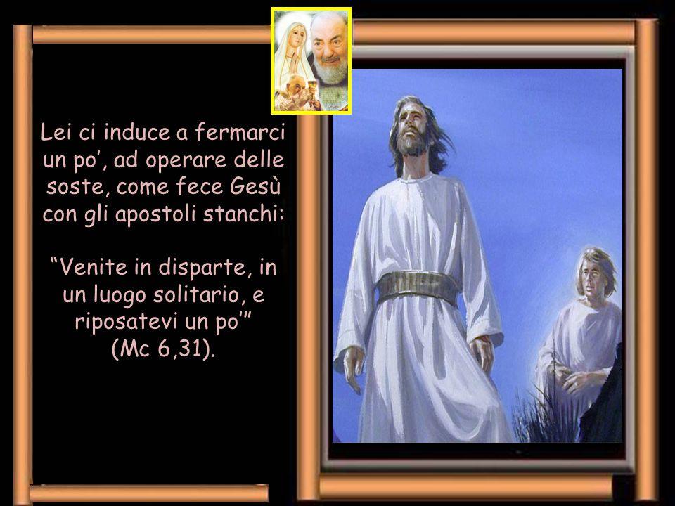 Pensiamo a Lourdes, a Fatima (a Medjugorje, a Loreto, ecc.), a tanti santuari mariani.