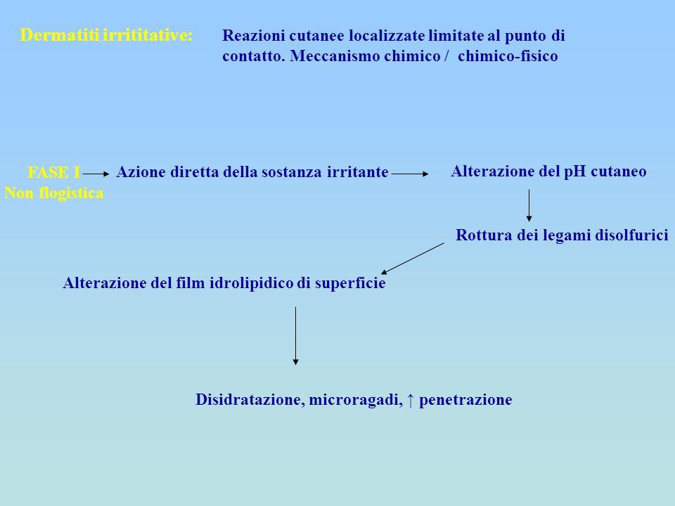 Dermatiti irrititative: Reazioni cutanee localizzate limitate al punto di contatto. Meccanismo chimico / chimico-fisico FASE I Non flogistica Azione d