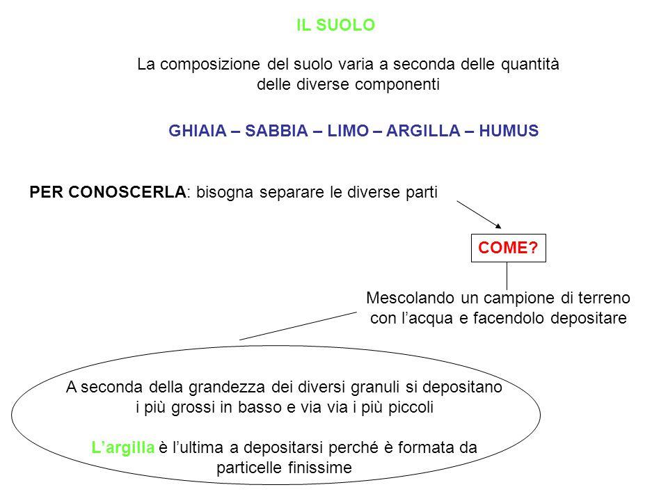 IL SUOLO La composizione del suolo varia a seconda delle quantità delle diverse componenti GHIAIA – SABBIA – LIMO – ARGILLA – HUMUS PER CONOSCERLA: bi