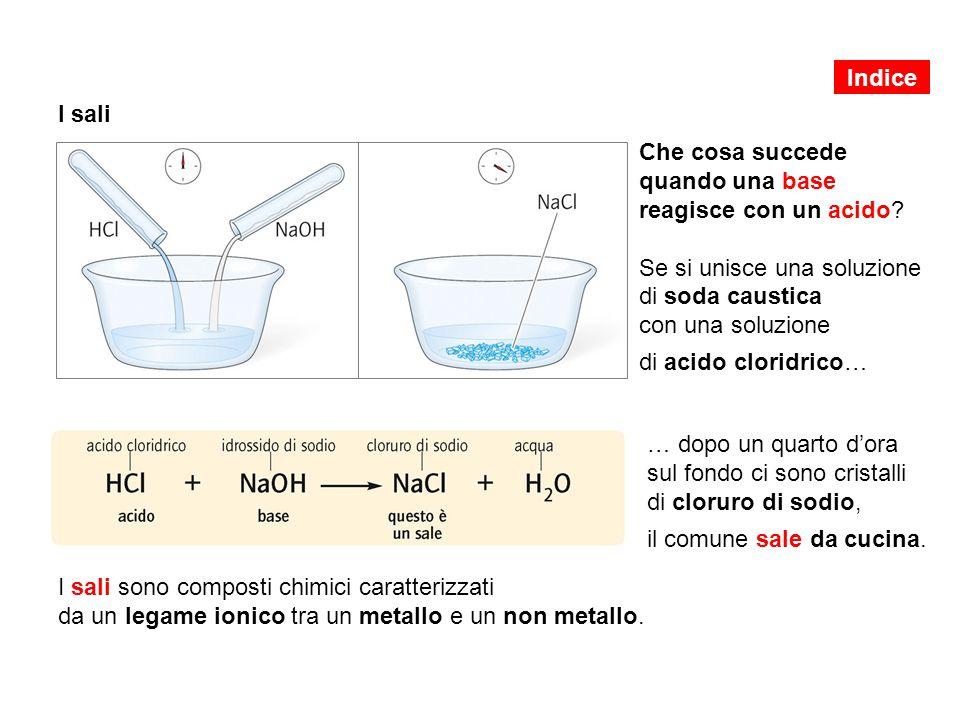 I sali Che cosa succede quando una base reagisce con un acido.