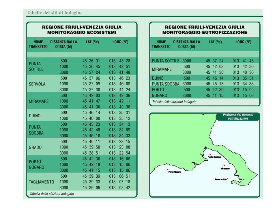 Parametri microbiologici nei mitili I risultati delle analisi microbiologiche relative all'accumulo di indicatori fecali nei mitili solitamente rafforzano il quadro già delineato dal monitoraggio sulle acque costiere.
