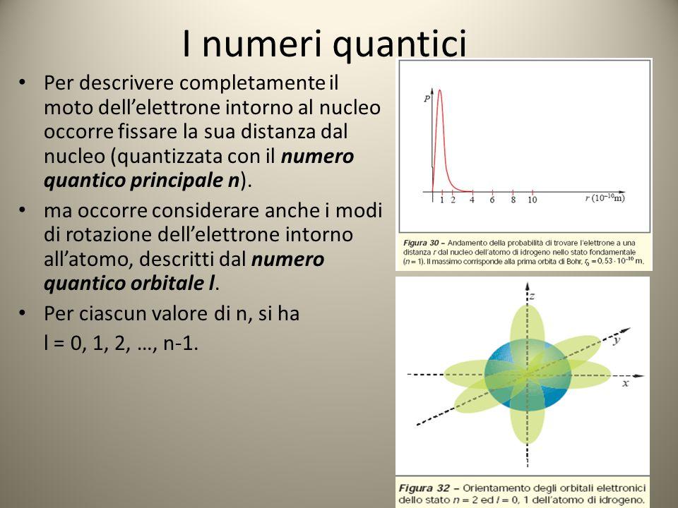 I numeri quantici Per descrivere completamente il moto dell'elettrone intorno al nucleo occorre fissare la sua distanza dal nucleo (quantizzata con il