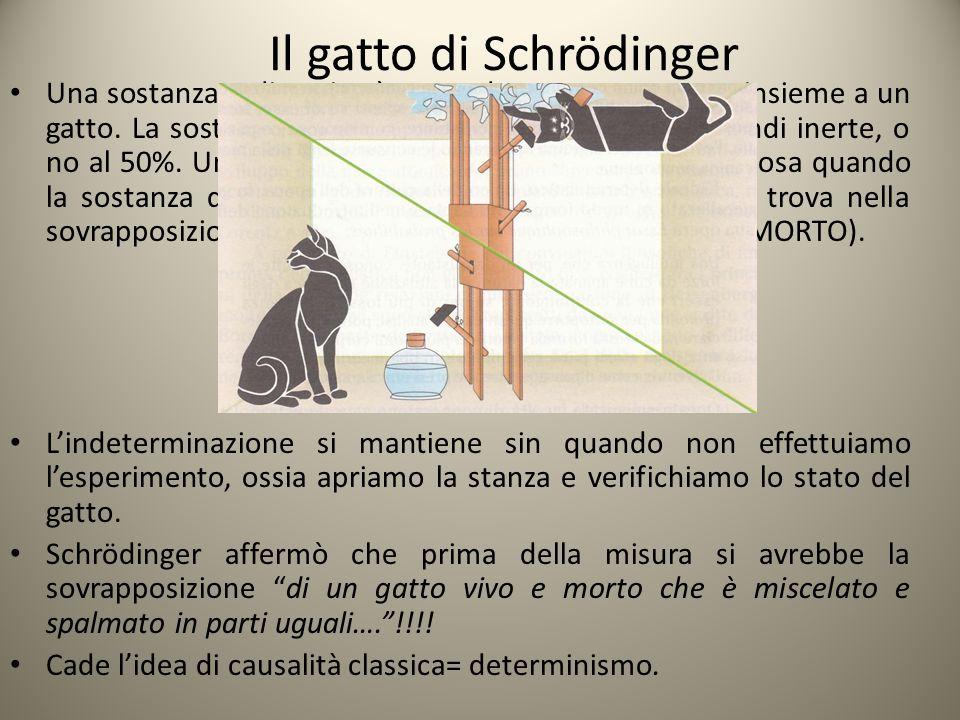 Il gatto di Schrödinger Una sostanza radioattiva è posta dentro a una stanza insieme a un gatto. La sostanza potrebbe essere già decaduta, quindi iner