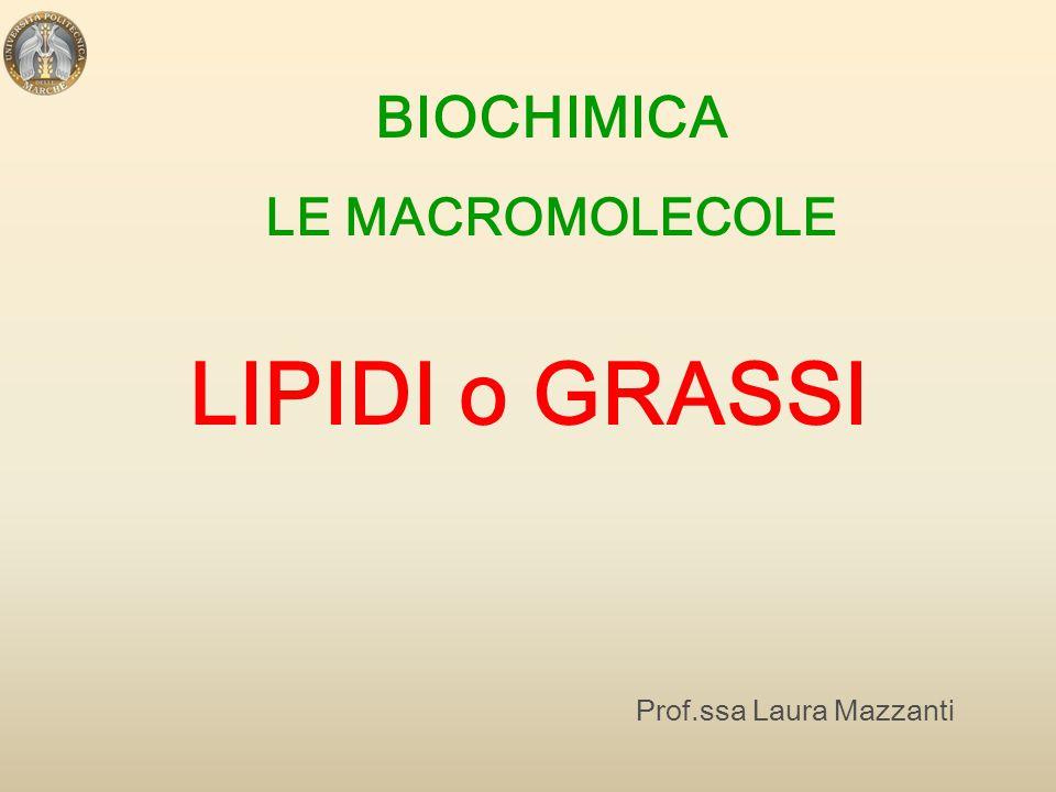 BIOCHIMICA LE MACROMOLECOLE Prof.ssa Laura Mazzanti LIPIDI o GRASSI