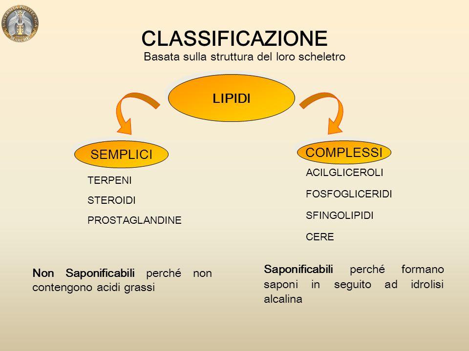 LIPIDI ALIMENTARI I lipidi che rivestono maggior importanza da un punto di vista nutrizionale sono: LE PRINCIPALI FUNZIONI  Forniscono energia 9Kcal/g  Fungono da riserva energetica nel tessuto adiposo  Forniscono acidi grassi essenziali (acido linoleico e acido linolenico) per la sintesi di molecole biologicamente attive (prostaglandine, leucotrieni, tromboxani)  Forniscono colesterolo ACIDI GRASSITRIGLICERDICOLESTEROLOFOSFOLIPIDI  Trasporto di vitamine liposolubili (vit.A, vit.D, vit.E, vit.K, carotenoidi)