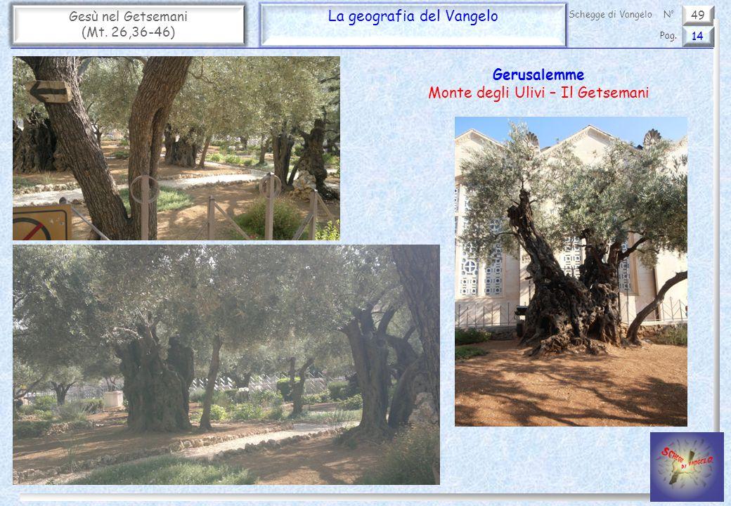 49 Gesù nel Getsemani (Mt. 26,36-46) La geografia del Vangelo 14 Pag. Schegge di VangeloN° Gerusalemme Monte degli Ulivi – Il Getsemani