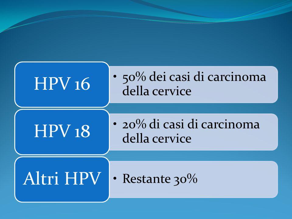 50% dei casi di carcinoma della cervice HPV 16 20% di casi di carcinoma della cervice HPV 18 Restante 30% Altri HPV