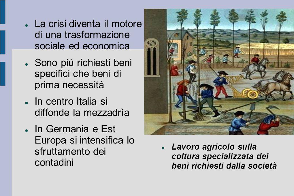La crisi diventa il motore di una trasformazione sociale ed economica Sono più richiesti beni specifici che beni di prima necessità In centro Italia s