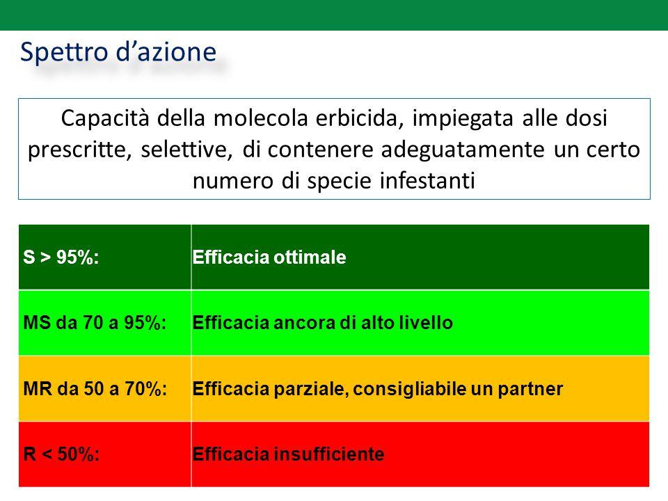 Spettro d'azione Capacità della molecola erbicida, impiegata alle dosi prescritte, selettive, di contenere adeguatamente un certo numero di specie inf