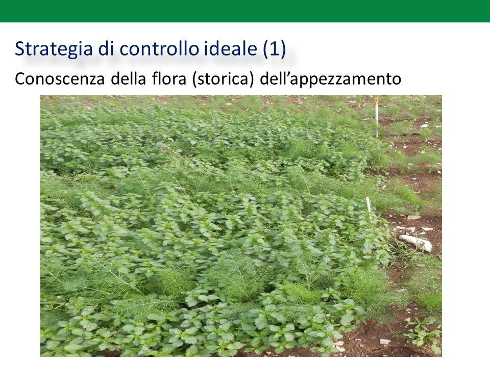 Strategia di controllo ideale (1) Conoscenza della flora (storica) dell'appezzamento