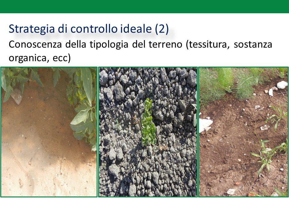 Strategia di controllo ideale (2) Conoscenza della tipologia del terreno (tessitura, sostanza organica, ecc)