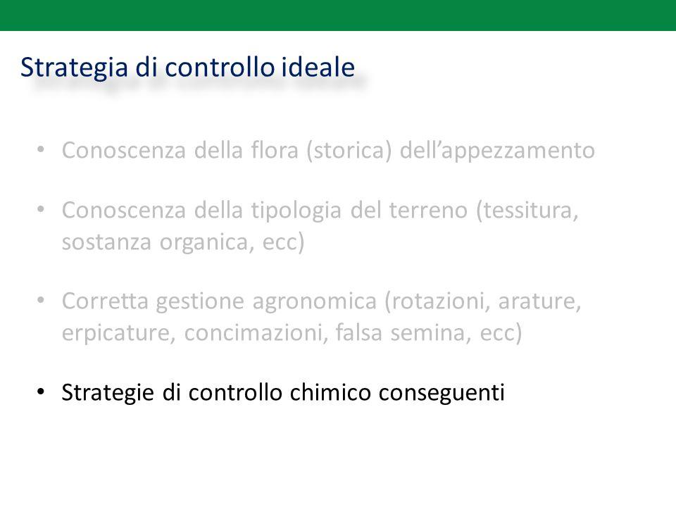 Strategia di controllo ideale Conoscenza della flora (storica) dell'appezzamento Conoscenza della tipologia del terreno (tessitura, sostanza organica,