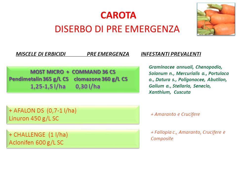 CAROTA DISERBO DI PRE EMERGENZA MISCELE DI ERBICIDIPRE EMERGENZA INFESTANTI PREVALENTI + AFALON DS (0,7-1 l/ha) Linuron 450 g/L SC + AFALON DS (0,7-1