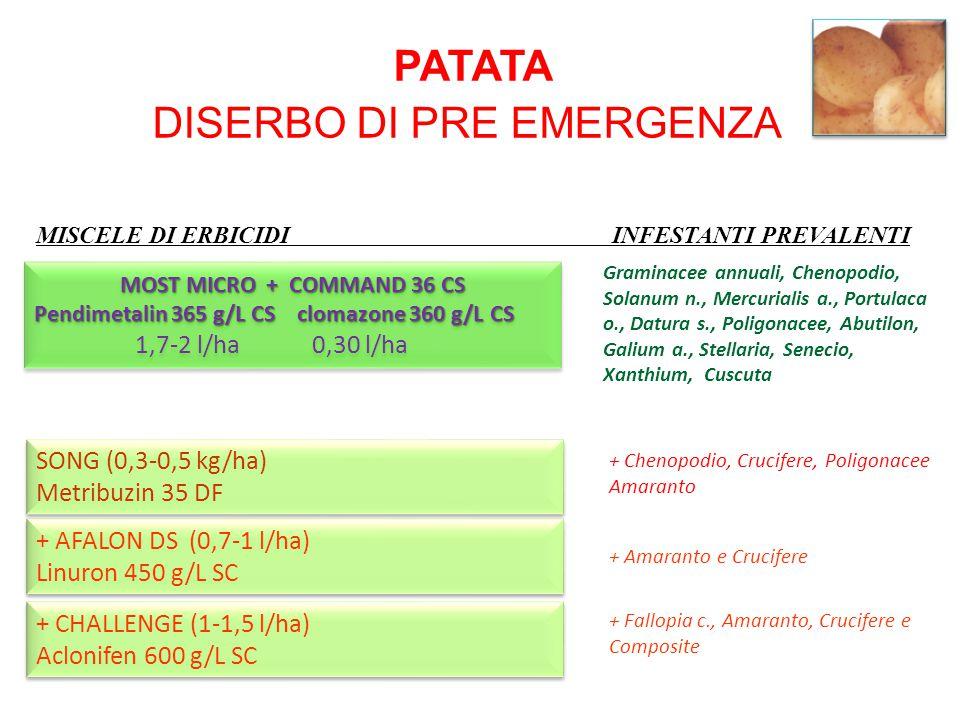 MISCELE DI ERBICIDI INFESTANTI PREVALENTI PATATA DISERBO DI PRE EMERGENZA + AFALON DS (0,7-1 l/ha) Linuron 450 g/L SC + AFALON DS (0,7-1 l/ha) Linuron