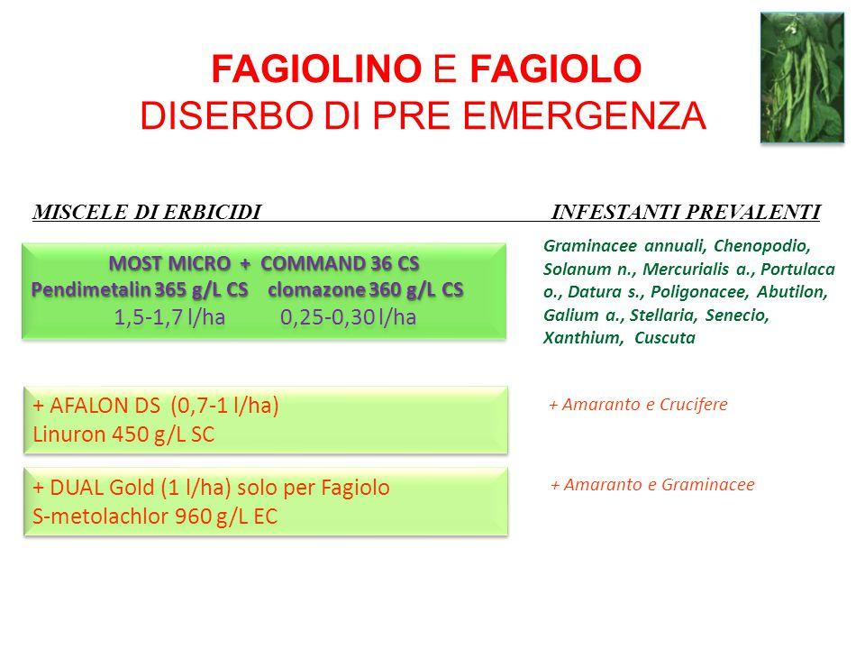 MISCELE DI ERBICIDI INFESTANTI PREVALENTI FAGIOLINO E FAGIOLO DISERBO DI PRE EMERGENZA + AFALON DS (0,7-1 l/ha) Linuron 450 g/L SC + AFALON DS (0,7-1