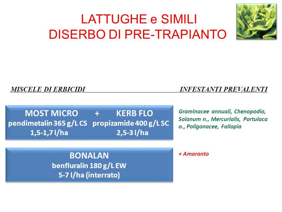 LATTUGHE e SIMILI DISERBO DI PRE-TRAPIANTO MOST MICRO + KERB FLO pendimetalin 365 g/L CS propizamide 400 g/L SC 1,5-1,7 l/ha 2,5-3 l/ha MOST MICRO + K
