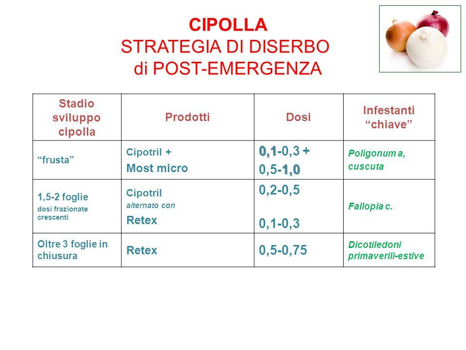 """Stadio sviluppo cipolla ProdottiDosi Infestanti """"chiave"""" """"frusta"""" Cipotril + Most micro 0,1 0,1-0,3 + 1,0 0,5-1,0 Poligonum a, cuscuta 1,5-2 foglie do"""