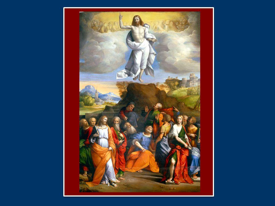 Il Signore attira lo sguardo degli Apostoli - il nostro sguardo - verso il cielo per indicare come percorrere la strada del bene durante la vita terrena.