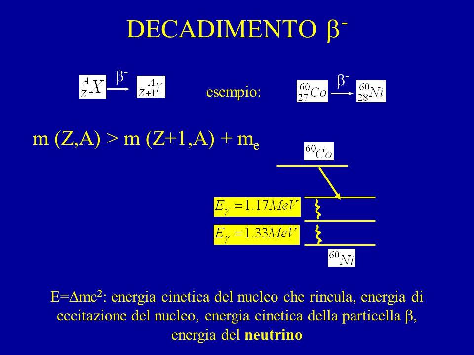 DECADIMENTO  - esempio: m (Z,A) > m (Z+1,A) + m e E=  mc 2 : energia cinetica del nucleo che rincula, energia di eccitazione del nucleo, energia cinetica della particella , energia del neutrino -- --