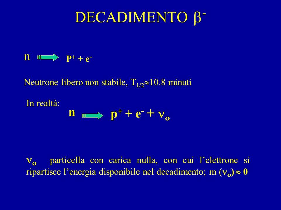 DECADIMENTO  - n P + + e - Neutrone libero non stabile, T 1/2  10.8 minuti In realtà: n p + + e - +     particella con carica nulla, con cui l'elettrone si ripartisce l'energia disponibile nel decadimento; m (  )  0