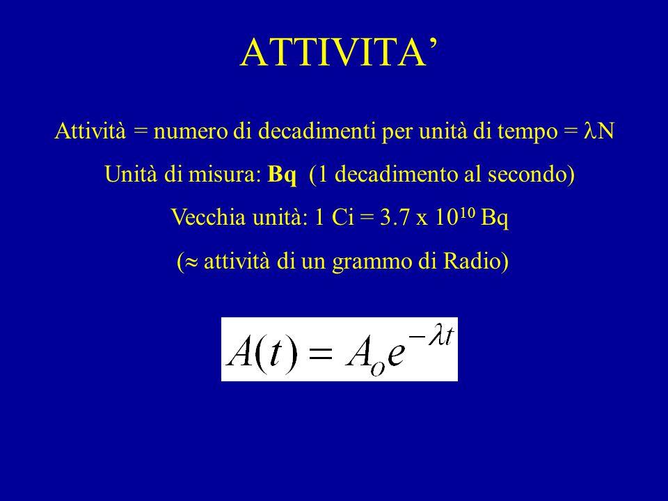 ATTIVITA' Attività = numero di decadimenti per unità di tempo = N Unità di misura: Bq (1 decadimento al secondo) Vecchia unità: 1 Ci = 3.7 x 10 10 Bq (  attività di un grammo di Radio)