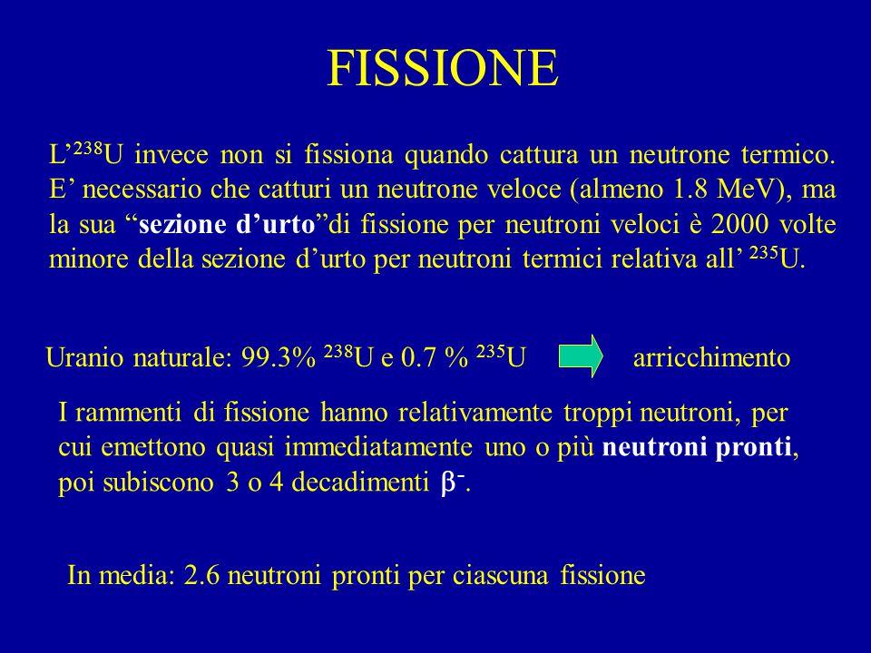 FISSIONE L' 238 U invece non si fissiona quando cattura un neutrone termico.
