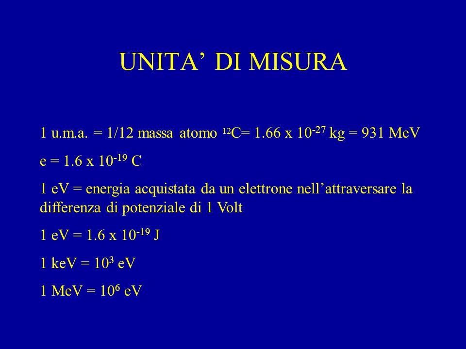 UNITA' DI MISURA 1 u.m.a.