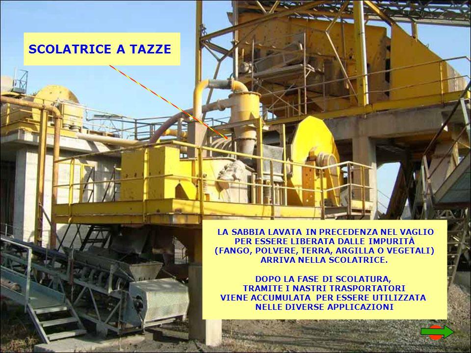 SCOLATRICE A TAZZE LA SABBIA LAVATA IN PRECEDENZA NEL VAGLIO PER ESSERE LIBERATA DALLE IMPURITÀ (FANGO, POLVERE, TERRA, ARGILLA O VEGETALI) ARRIVA NELLA SCOLATRICE.