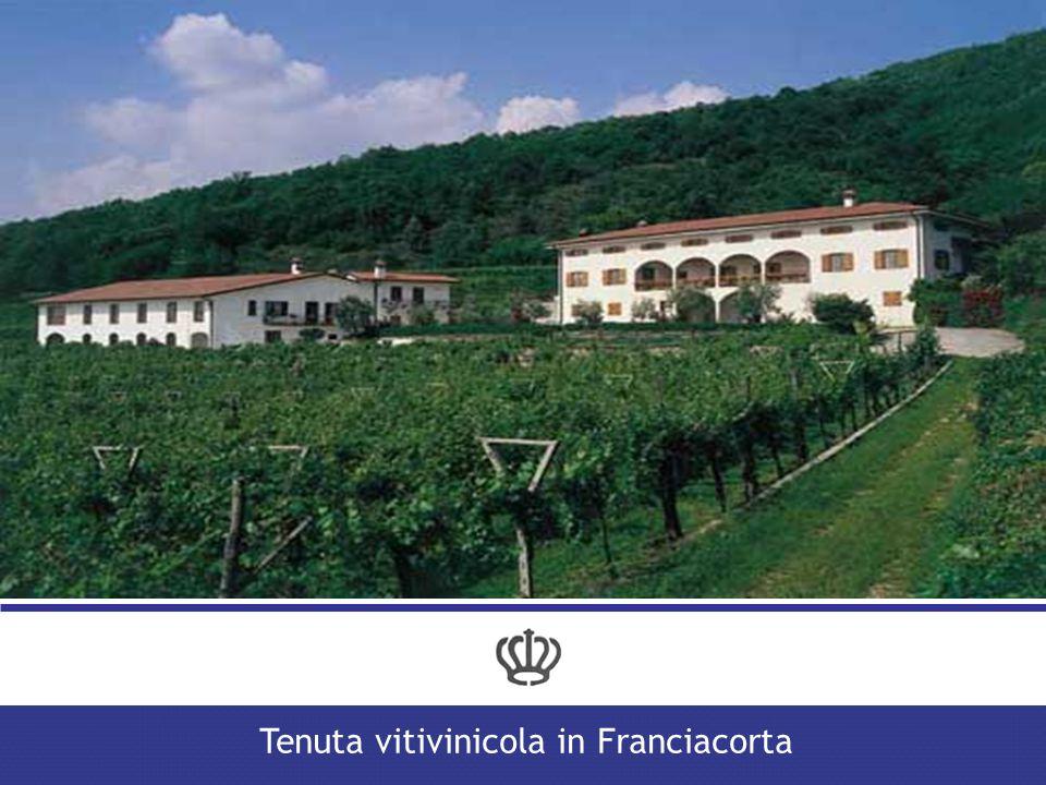Note sulla proprietà Tenuta vitivinicola in Franciacorta La proprietà è intestata a 2 persone fisiche a titolo personale.