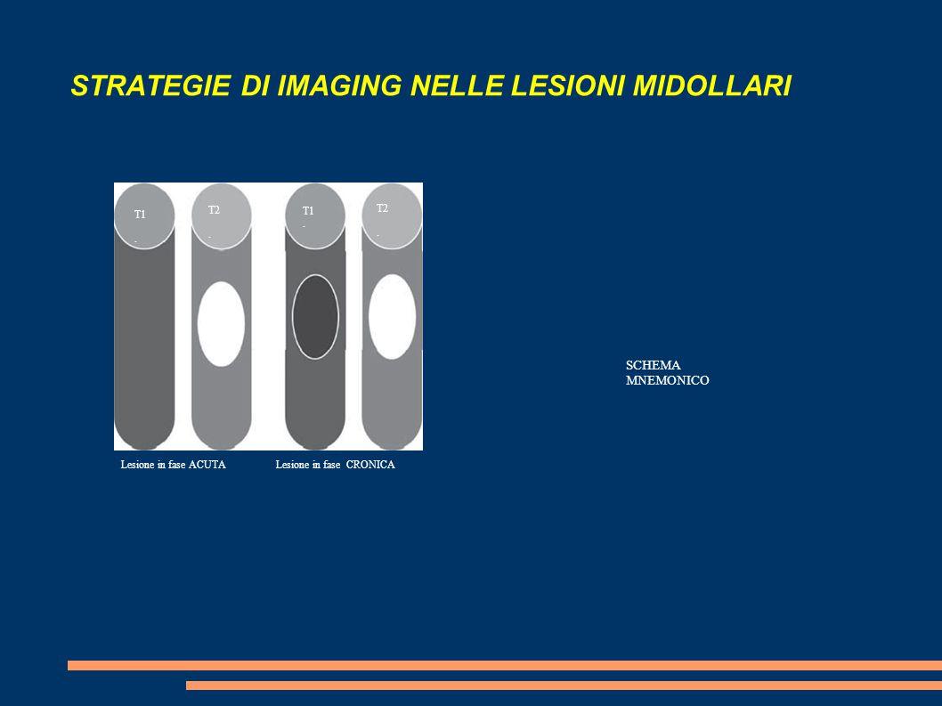 STRATEGIE DI IMAGING NELLE LESIONI MIDOLLARI SCHEMA MNEMONICO T1. T1. T2. T2. Lesione in fase CRONICALesione in fase ACUTA