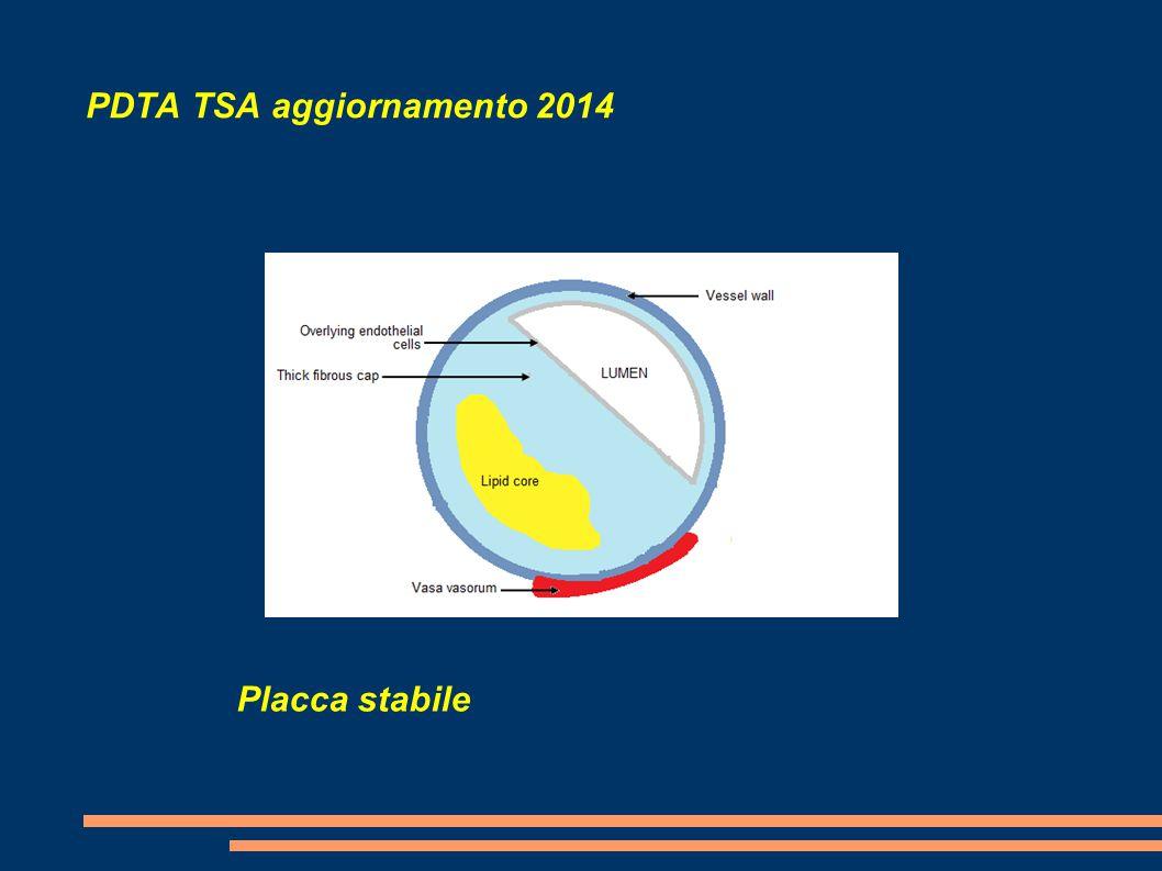 PDTA TSA aggiornamento 2014 Placca stabile