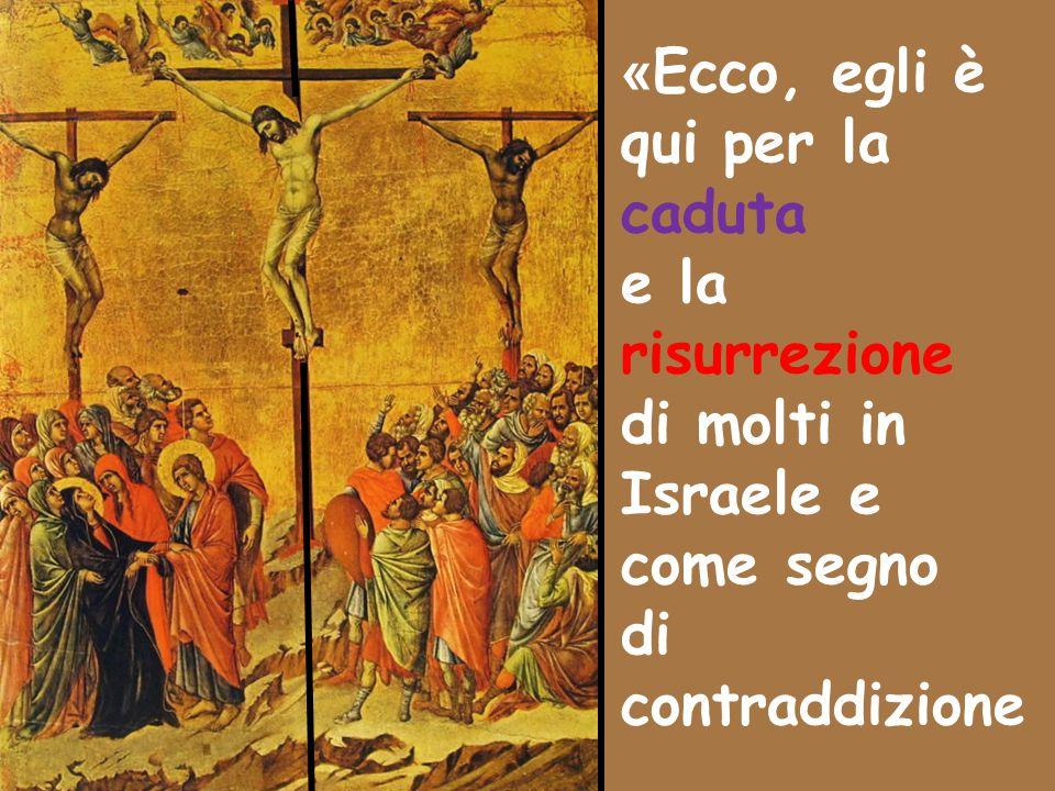 « Ecco, egli è qui per la caduta e la risurrezione di molti in Israele e come segno di contraddizione
