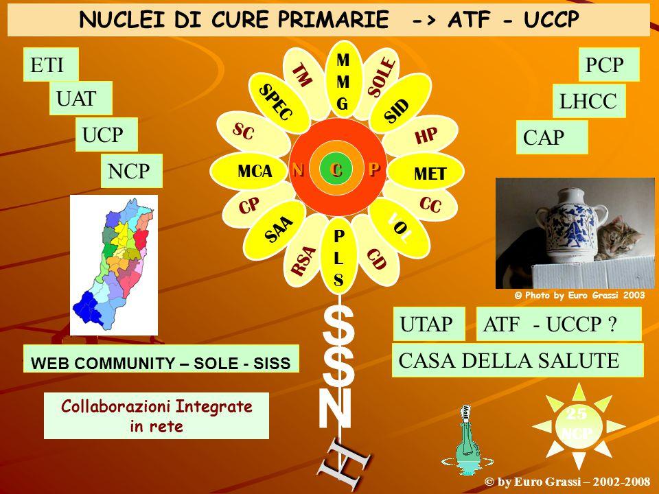 S S N MMGMMG PLSPLS MCA MET HH SID SAA VOLVOL SPEC N C P RSA CP CD SC CC HP TM SOLE © by Euro Grassi – 2002-2008 NUCLEI DI CURE PRIMARIE -> ATF - UCCP