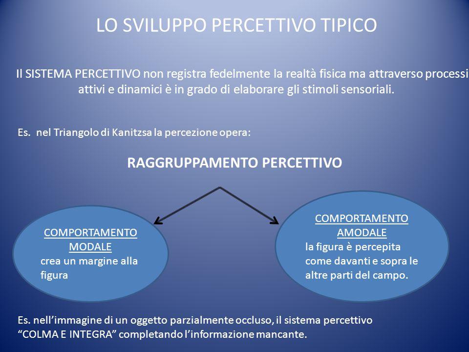 CATEGORIZZAZIONE PERCETTIVA processo in base al quale oggetti e stimoli percettivi differenti vengono raggruppati in base ad alcune caratteristiche comuni.
