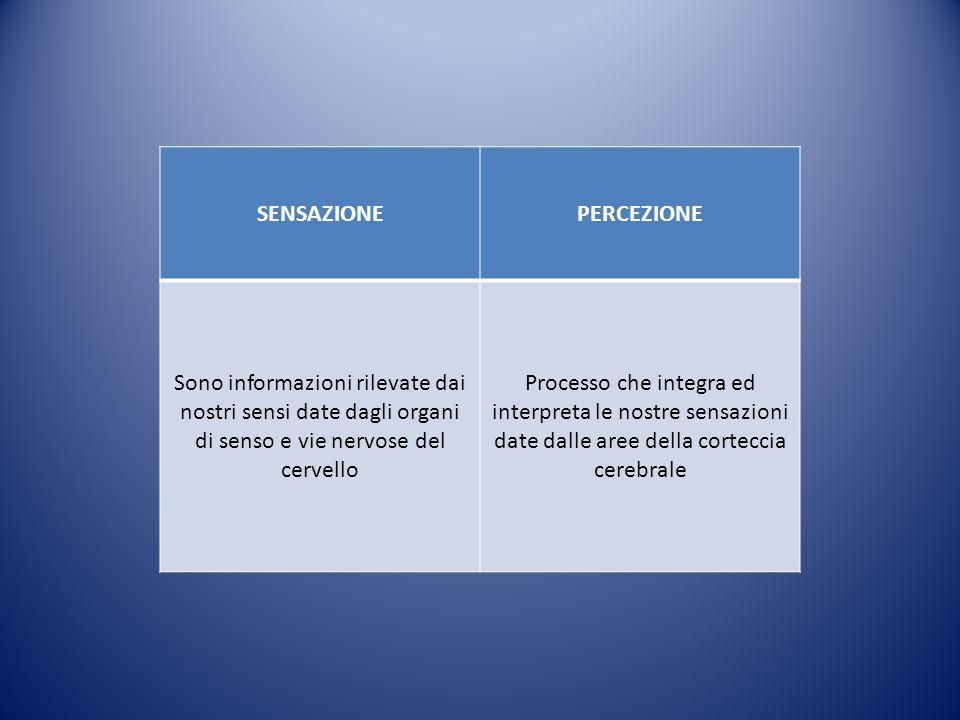 LO SVILUPPO MOTORIO PSICOMOTORIO E DELLE FUNZIONI SENSORIALI